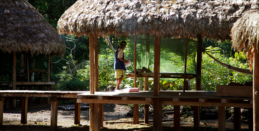 The newer, community-based Ti'inkias lodge, which provides a more rustic and direct experience of the rainforest and its people.